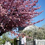 outfit: cherry blossom and pastels